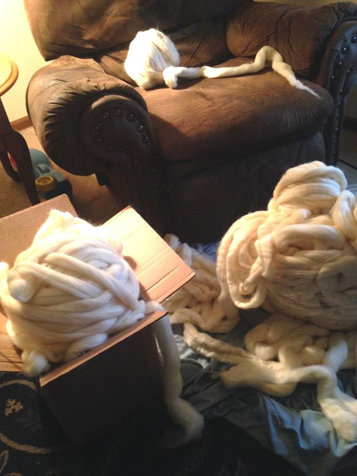 Any Extreme Crocheters Out There?-rovingboxes-jpg