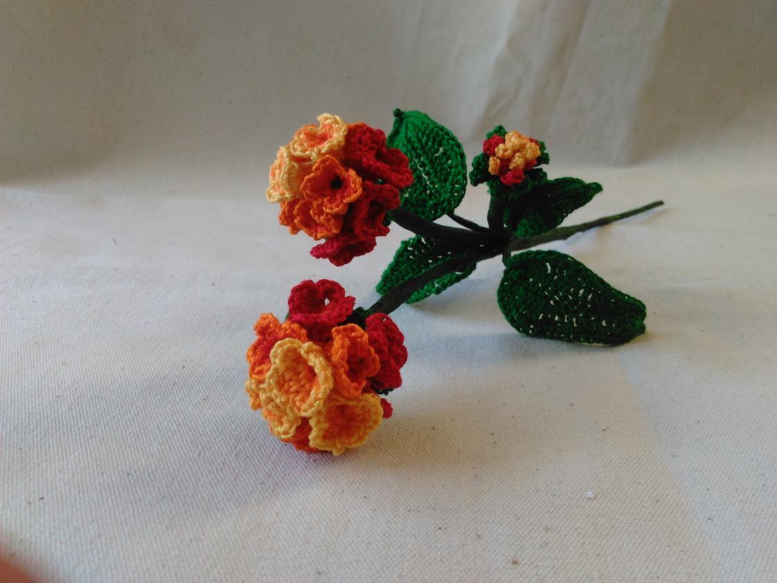 Citrus Blend Lantana Camara Crochet Flower (Free Pattern)!-img_20160512_155117-jpg
