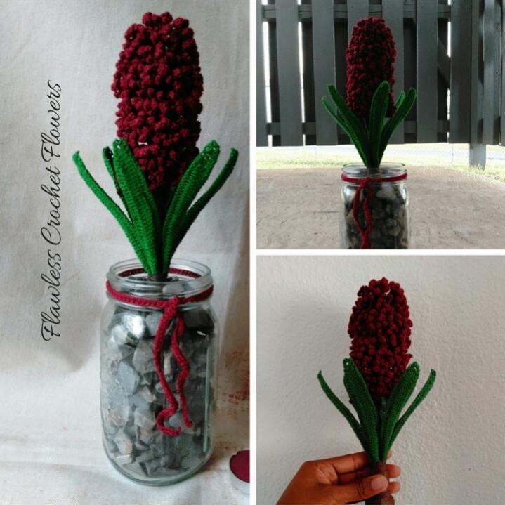 Crochet Woodstock Hyacinth-img_20161210_000252-jpg