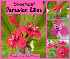 Sweetheart Peruvian Lily / Alstroemeria-sweetheart-jpg