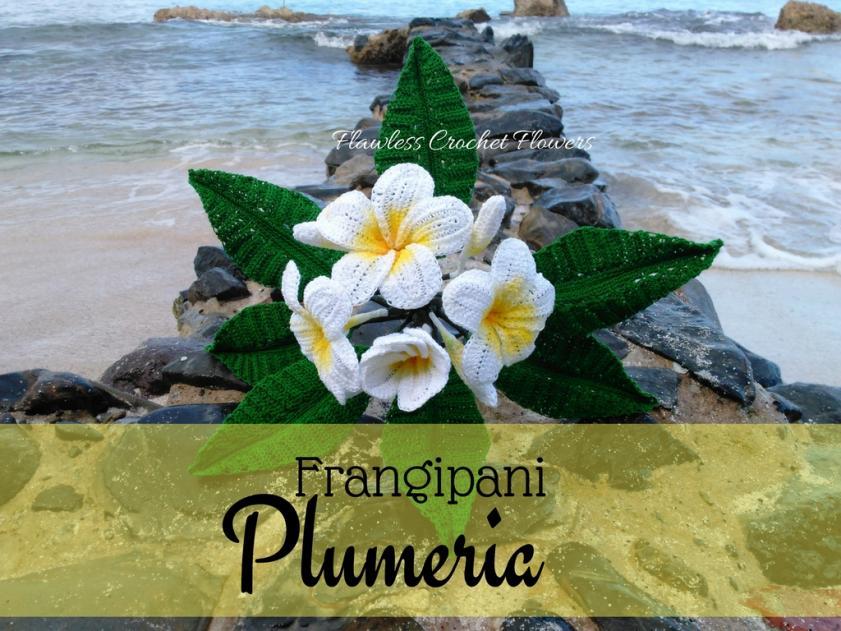 Plumeria Flower Pattern-plumeria-jpg