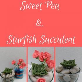 Beach Themed Terrarium: Sweet Pea Flower & Starfish Succulent-sweet-pea-starfish-succulent-1-jpg