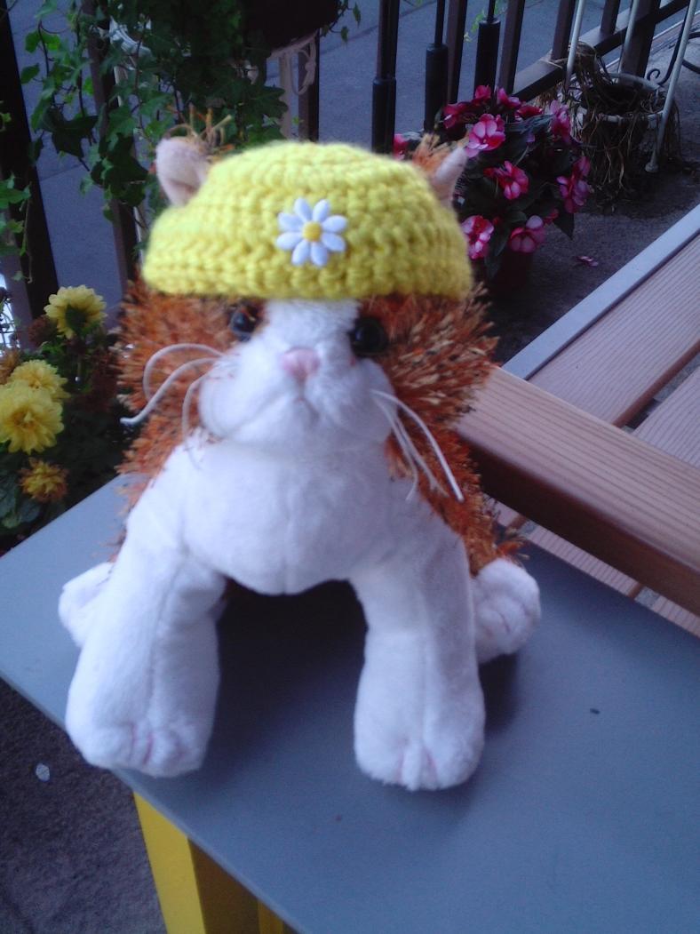Crocheted Stuffed Cat Hat-pic_1820-jpg
