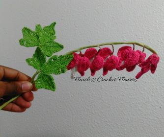 Bleeding Heart Flower Arrangement-bleeding-heart-2-jpg