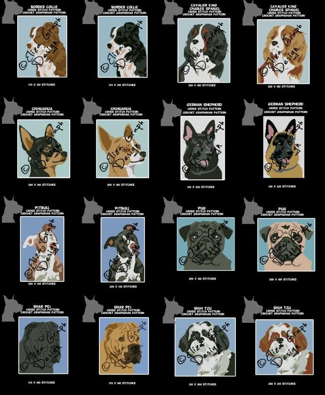 Brown Border Collie, Tricolor Cavalier King Charles Spaniel, Black Chihuahua,-untitled-1color-jpg