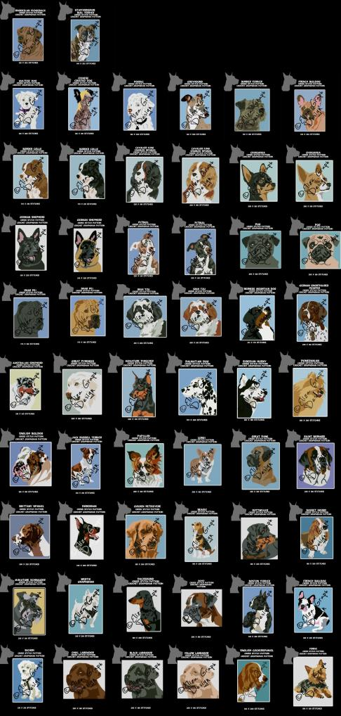 Border Terrier, Rhodesian Ridgeback, French Bulldog and the Staffy-47368034_494871931001334_8708154936916967424_o-jpg