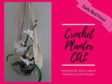 Egret Orchid and Planter Crochet Along-planter-jpg
