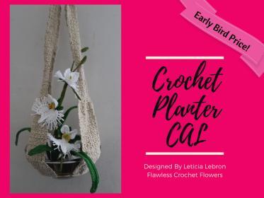 Egret Orchid and Planter Crochet Along-planter-jpg