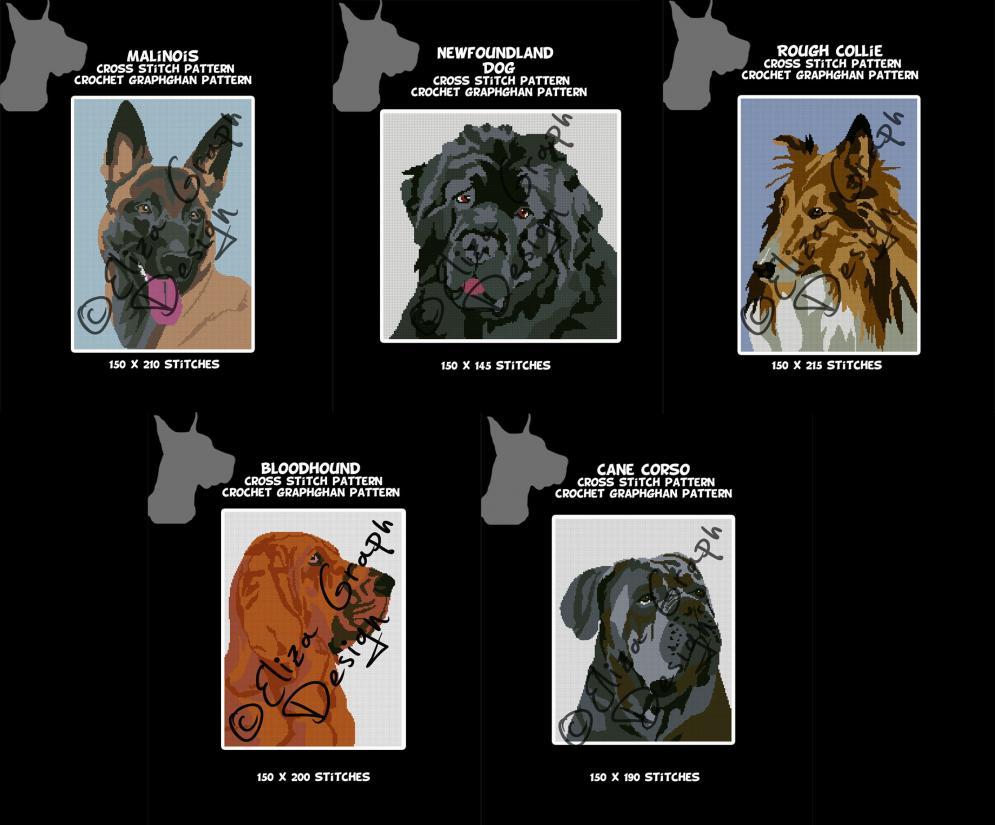Bloodhound, Cane Corso, Malinois, Newfoundland, Rough Collie-untitled-13-jpg