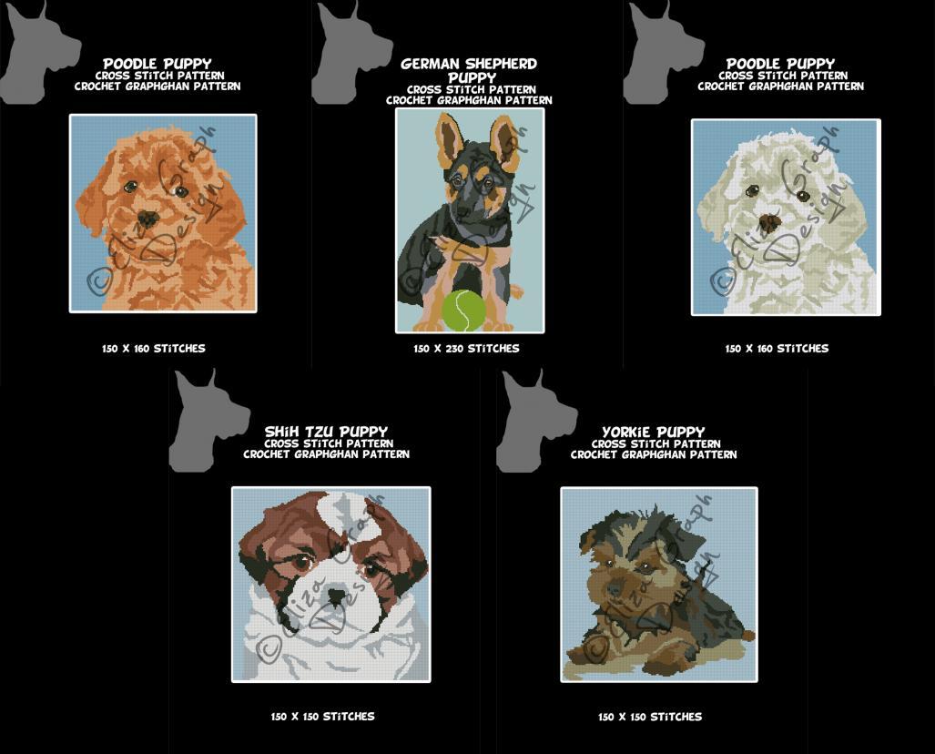 Puppies: German Shepherd, Shih Tzu, Yorkie, Toy Poodle-untitled-3-jpg