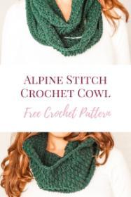 Aspen Alpine Beanie, Cowl and Fingerless Mitts-alpine2-jpg