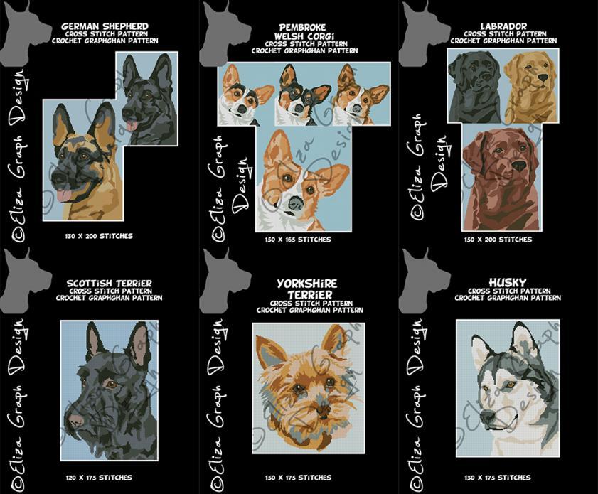 Corgi, German Shepherd, Labrador, Husky, Yorkie, Scotthis Terrier-unitled-16s-jpg