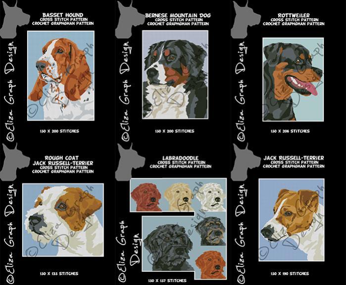 Basset Hound, Bernese Mountein Dog, Jack Russell Terrier, Labradoodle-unitled-19s-jpg