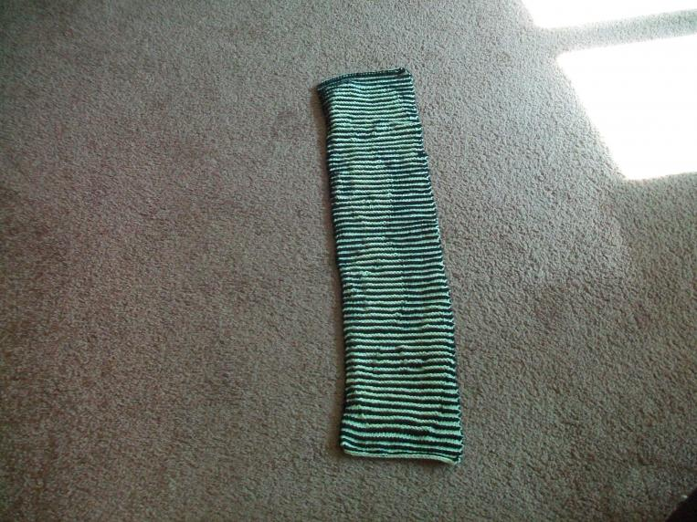 I finished knitting the 'duckie illusion scarf'-100_6988-jpg