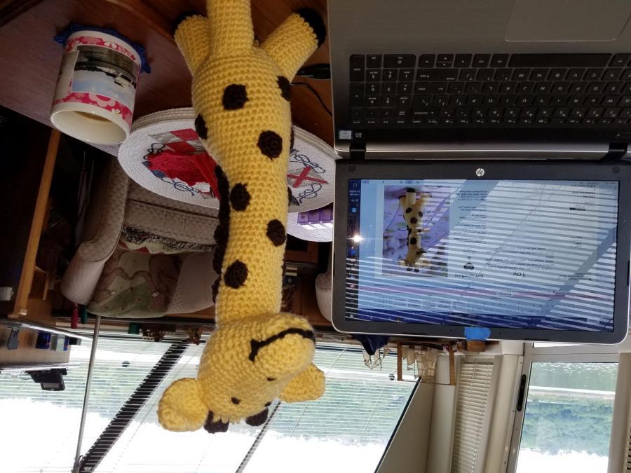 What's Everyone Working On?-giraffe-front-jpg