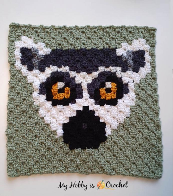 Ring Tailed Lemur C2C Square-c1-jpg