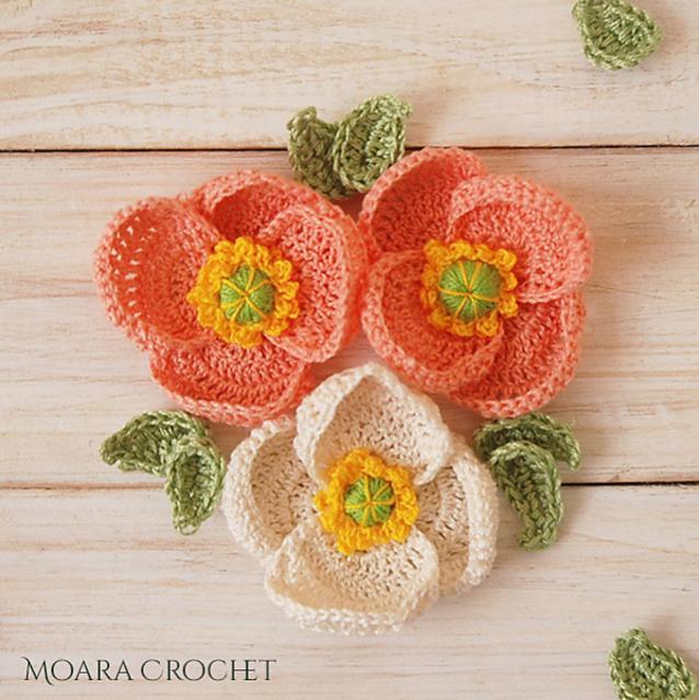 Poppy Flower-d2-jpg