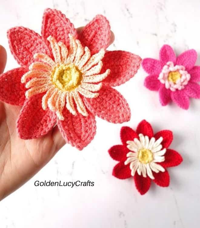 Dahlia Flower Applique-c2-jpg