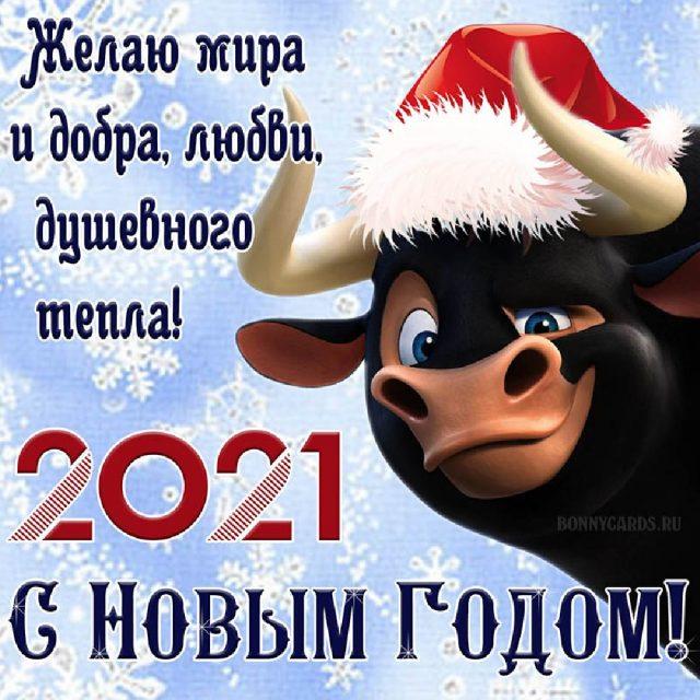 Happy New Year!-1-305-640x640-jpg