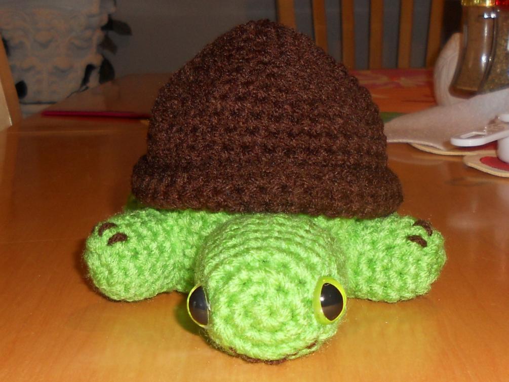 Turtle Jewelry Box-291-jpg