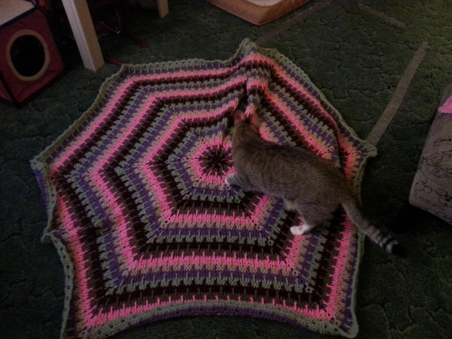 What crochet or knitting projects are you working on?-20140211_181106-jpg